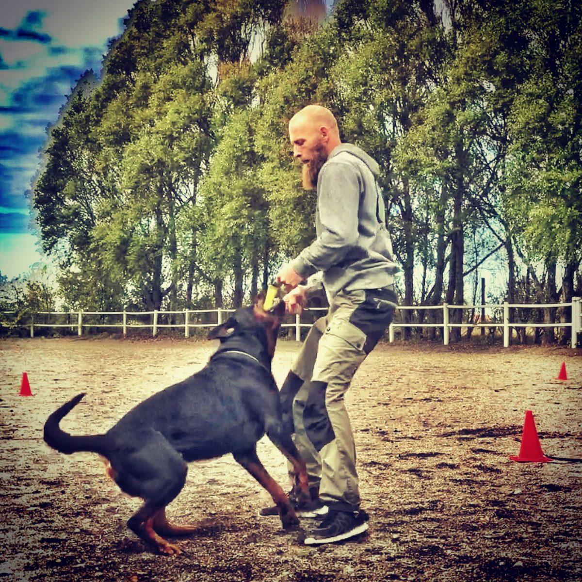 fortsättningskurs hundkurser Skåne