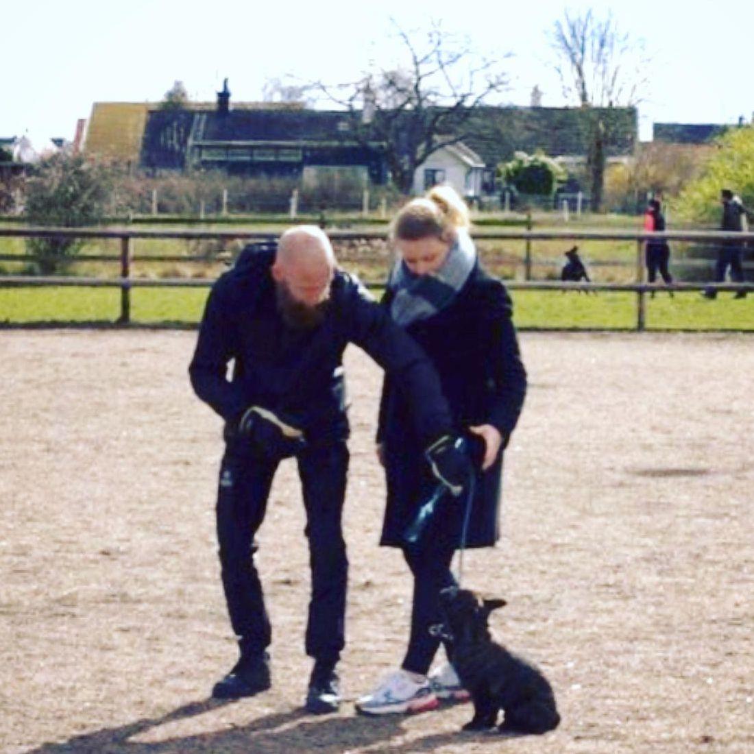 privat enskild hundträning hundkurser Skåne
